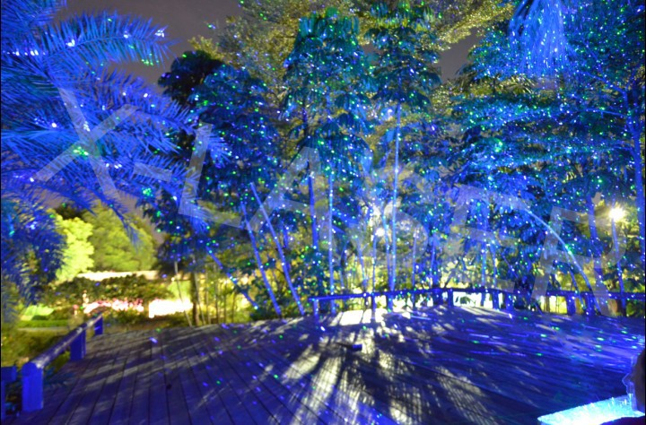 Outdoor Light Projector Stars picture on Outdoor Light Projector Starsoutdoor_laser_lights_for_trees_white_laser_christmas_lights_large_outdoor_christmas_lights.html with Outdoor Light Projector Stars, Outdoor Lighting ideas 93c50ef27ca621e50cac3c72bf1b6229