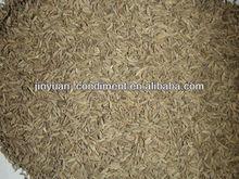 De calidad superior semillas de comino gránulos venta