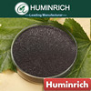 Huminrich Stimulate Root Hair Development Agricultural Fertilizers 60% Humic Acid For Plants