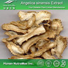 Plant Extract Chinese angelica Extract/Chinese angelica Extract Powder/Angelica Extract