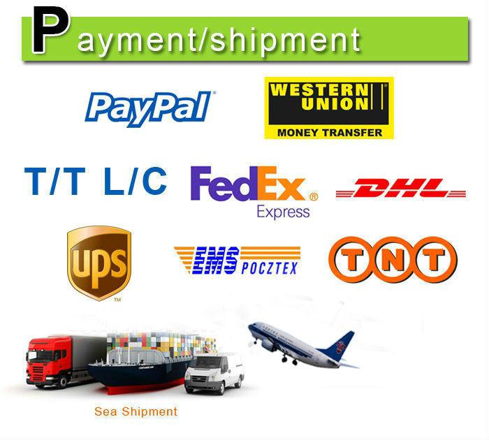 shiping1.jpg