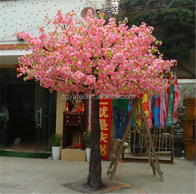 Ef Bf Bdrbol Decorativo Prunus