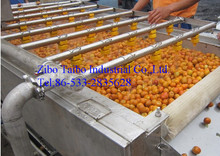 Orange and other fruits washing machine at competitive machine prices