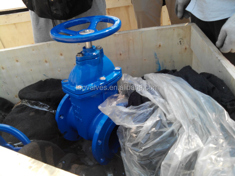 Resilient seal Gate Valve