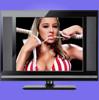 LCD & LED TV SKD CKD LED TV 14 inch