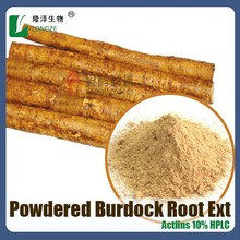 ISO factory Supply Great Burdock Achene(root) Extract arctiin 10%