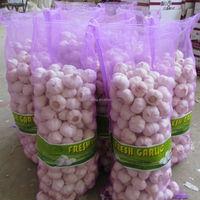 Chinese/China Shandong Garlic Price for 1 ton