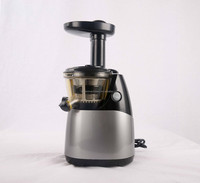 New Product Slow Grape Juice Extractor / Power Press Juicer with CE