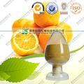 Cáscara de mandarina extracto 10:1 de la buena calidad de China