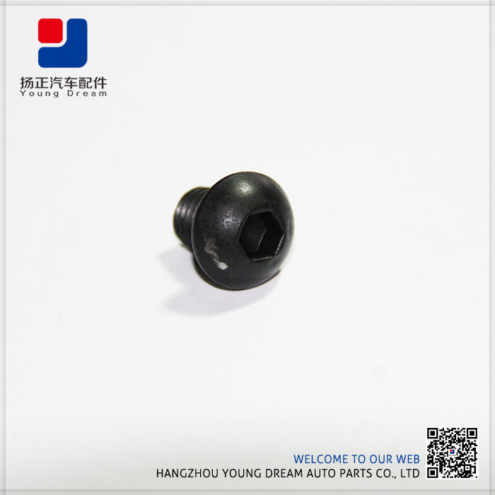 Good Quality and Facotory Price Customized China Fastener Manufacturer