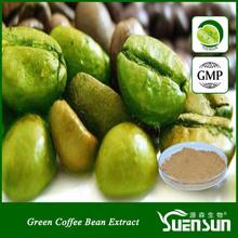 chlorogenic acid free sample green coffee bean extract powder