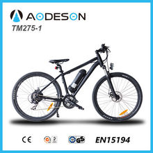 Sport bike 250w brushless motor electric mountain bike TM275-1,best lithium battery(Samsung Cell)