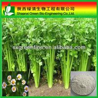 chamomile extract 1.2% apigenin