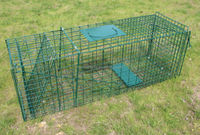 Collapsible Raccoon Skunk Fox Trap For Sale 37'*12'*12'