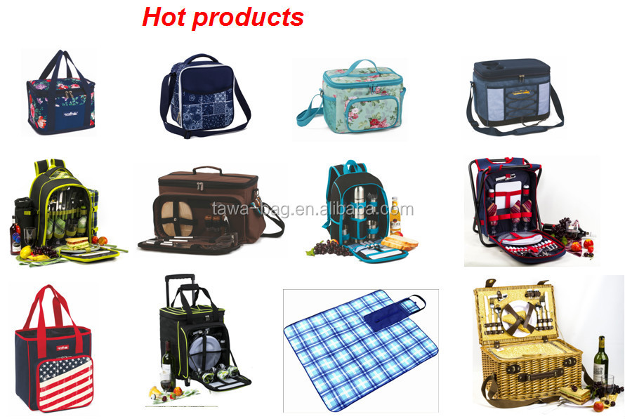 New arrival disposable cooler bag for frozen food