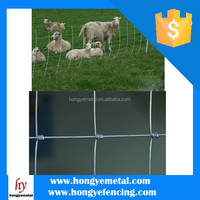 Manufacturer Directly Sale Stainless Steel Grassland Fences
