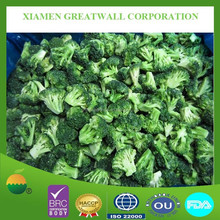 Hot seling frozen IQF broccoli with best price