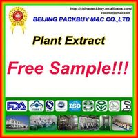 Top Quality From 10 Years experience manufacture mango leaves extract