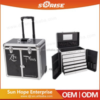 Guangzhou Factory Professional Storage Make Up Trolley case