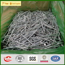 hot dipped galvanzied Iron steel nails manufacturers 1'', 2'',6''