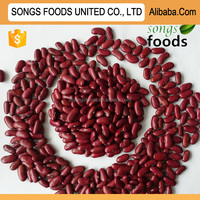 2014 Janpanese Red Kidney Beans with highes Protein for Sale