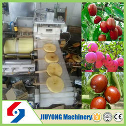 High quality and hot sale automatically automatic squid skewer machine