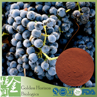 High Quality Proanthocyanidin 95% Grape Seed Extract