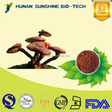 Organic Herbal Sex Power Product Ganoderma Lucidum P.E. for Sex Increase Medicine