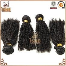 wholesale ideal no chemical pure virgin brazilian human hair afro kinky curly