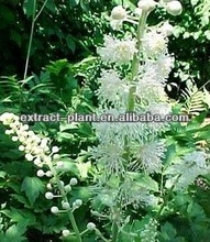 100% pure Black Cohosh Extract from manufacturrer 4776-26-1