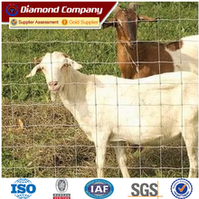 Hinge Jointed Cattle / Horse / Deer / Hog / Farm Field fence