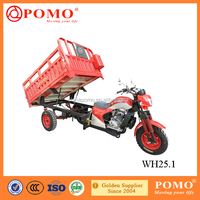 China Popular Heavy Load Water Cooled Strong Power Cargo 250cc Reverse Trike