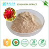 Kosher Certificated factory Liver Protection Function schisandra Chinensis P.E