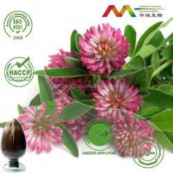 GMP&ISO Manufacturer Supplying Hot Sale Red Clover Extract