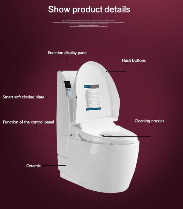 Automatic Toilets For Homes : Automatic intelligent toilet smart seat buy