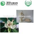 Herbe médicinale chinoise flos magnoliae extrait