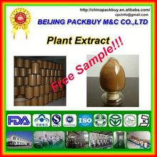 Top Quality From 10 Years experience manufacture raspberry seed extract
