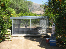 China supplier wholesale welded wire mesh iron fence handmade dog kennel
