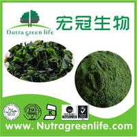 healthy organic spirulina powder