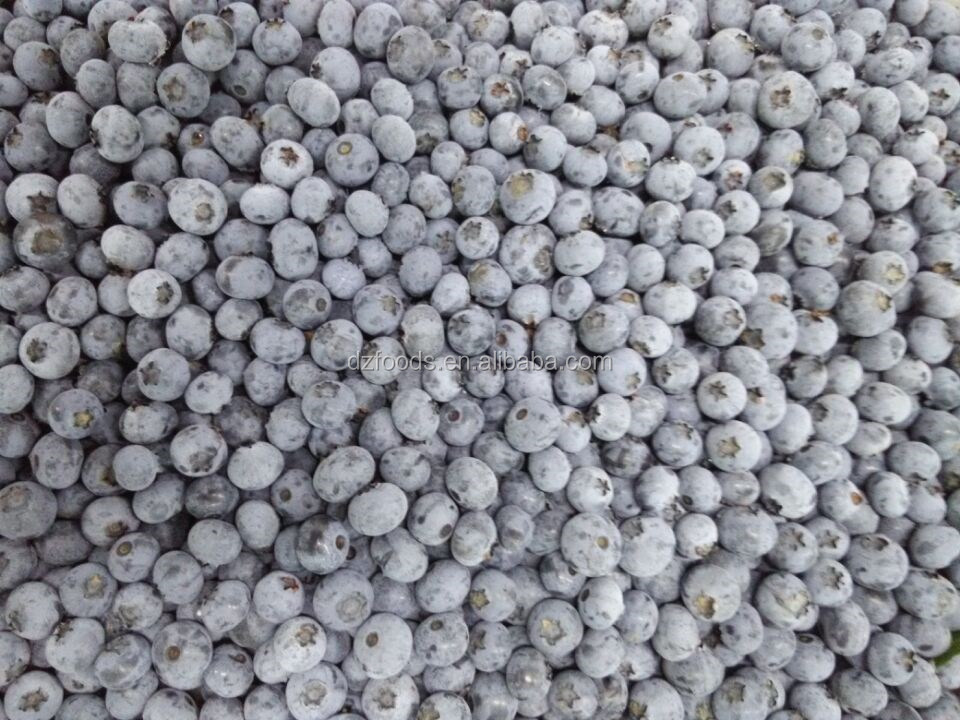 frozen blueberry IQF