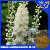 top quality black cohosh root extract