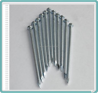 Stainless Concrete Steel Nails/Galvanized Concrete Nails