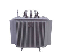 oil-immersed and dry type transformer