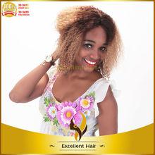 Fashion kinky curly 100% brazilian virgin human hair wigs for african americans