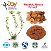 Free Sample Rhodiola Rosea Extract Enhancing the immune system