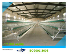 low cost and sandwich panel steel structure prefab layers cages chicken farm