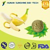 pure natural banana powder/banana extract powder/organic banana powder