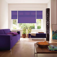 Good Quality durable classic roller blinds Roller window curtain made to measure
