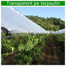anti-acid rain transparent tarpaulin cover sheet for cherry tree