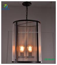 New Decorative Vintage Industial Iron Bird Cage Hanging Pendant Light